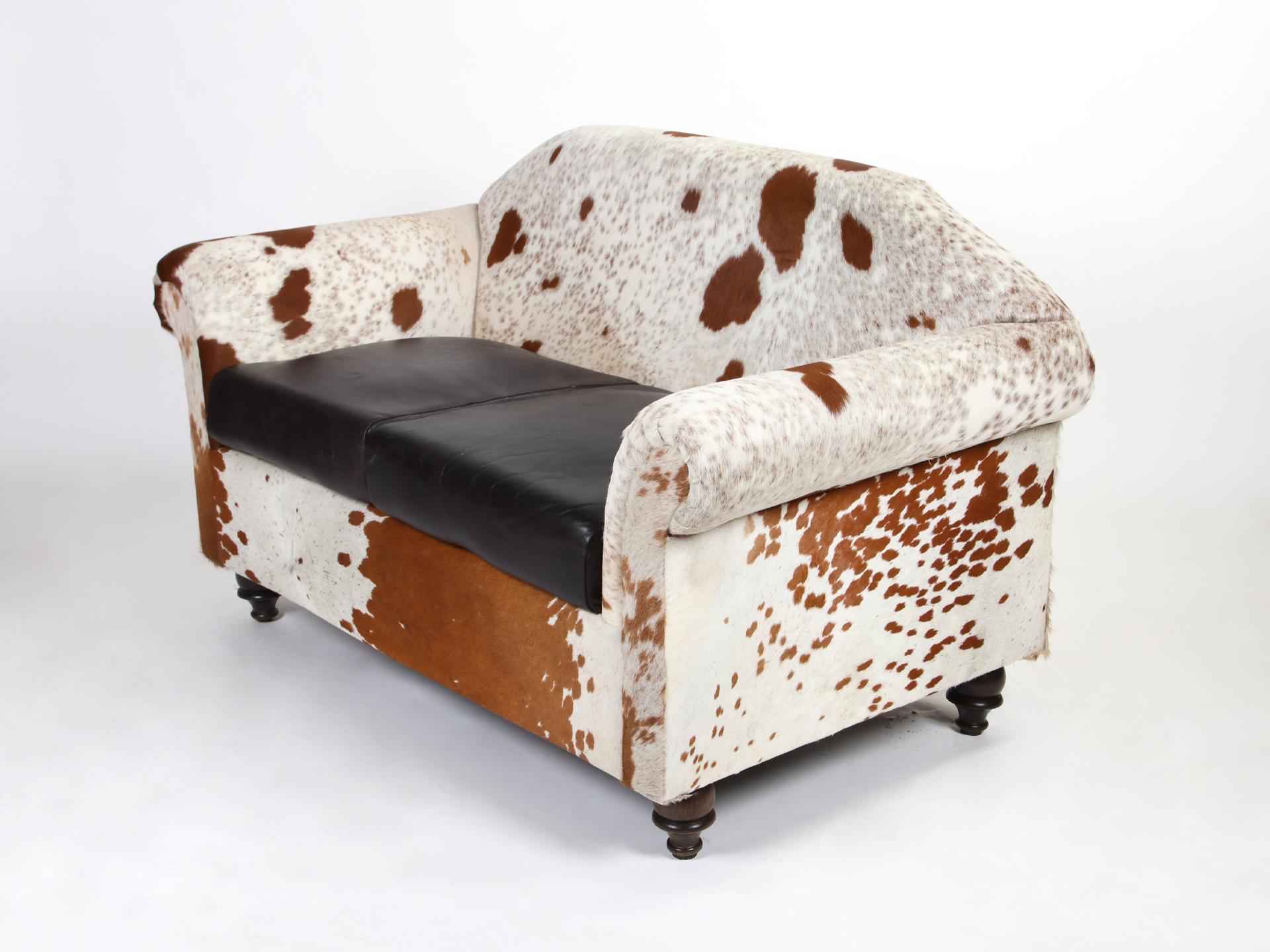 Canapea piele naturala 2 locuri vedere stanga sus 3d