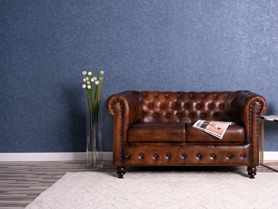 Canapele si fotolii din piele